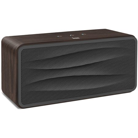 Haut-parleur Bluetooth; Charcoal