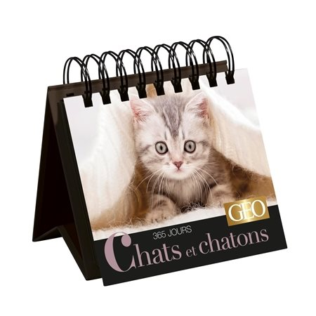 Chats et chatons: 365 jours